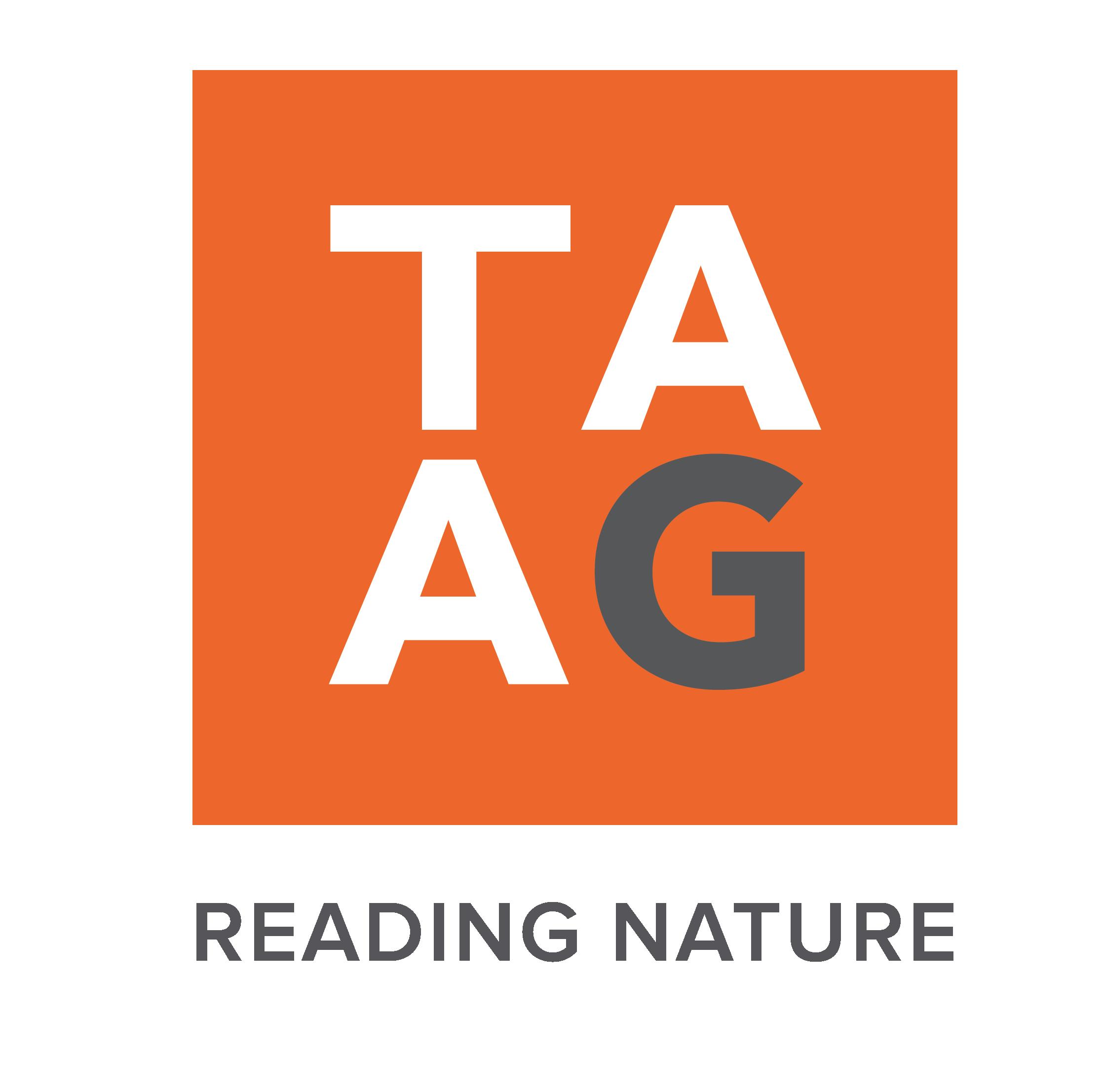 TAAG logotipo